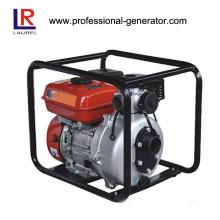Benzin-Selbstabsorptions-Agrar-Wasser-Pumpen-Set