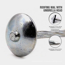 Professional Roofing Nails 2.5xbwg9 with Good Quality