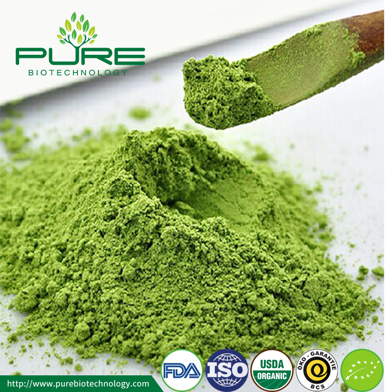 Organic Matcha Powder 2