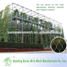 Flexible Stainless Steel Rope Mesh For Green Wall