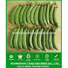 NPE03 Тианде высокой урожайности семена сахарного гороха Гуанчжоу