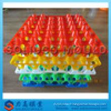 Usine de moule de plateau d'oeufs en plastique de conception de Deft