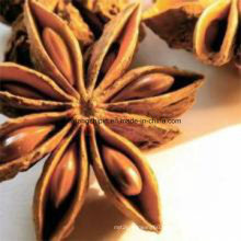 Factory Supply 98% Star Anise Extract, Shikimic Acid