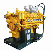 Natural Gas/Bio Gas Generator Power Plant 1000rpm