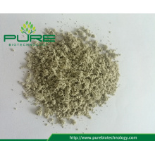 Low price bulk hemp seed powder