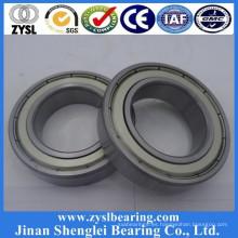 La industria del cemento fundió rodamientos rígidos de bolas 61980