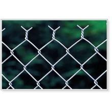 Galvanizado ou PVC Revestido Chain Link Fence para Animais