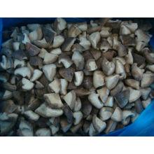 лучшие продажи китайский замороженный гриб горячим экспорт