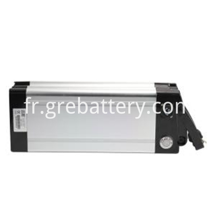 48V 1000W lithium ion battery