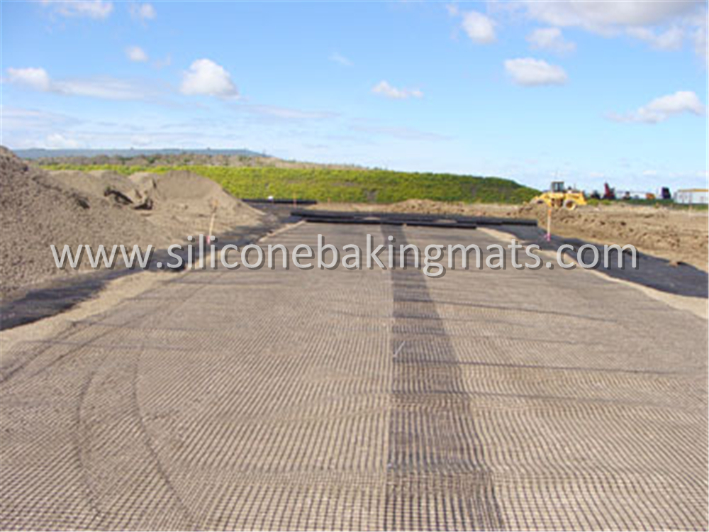 Soil Reinforcement Geogrid