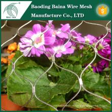 Fenda de arame de cerca de fio de aço inoxidável para flores de jardim