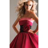 Lovely Ball Gown Strapless Taffeta Floral Accent Mini Cocktail Dress