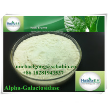 Enzima alfa-galactosidase