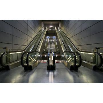 Public Transport Escalator