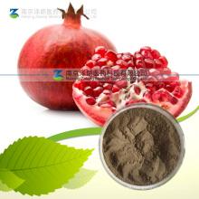 Extracto natural de corteza de granada Extracto de ácido elágico 95%