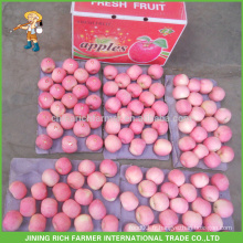 Hot Sale Fresh Fuji Apple produits, Fruits chinois Fuji Apple Fournisseur Grade A Fresh Apple