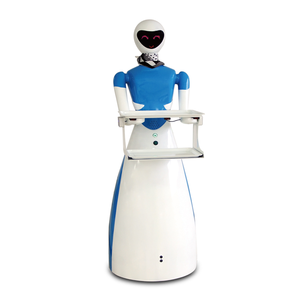 Goddess waiter robot