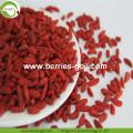 Factory Supply Fruits Dried Premium Goji Berry