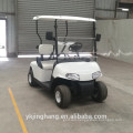 2200W 2 seater police golf cart