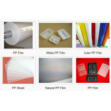 Vakuumformung PP-Folie für Trays