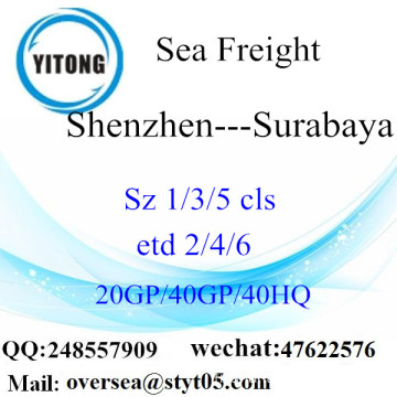 Shenzhen Port Sea Freight Shipping To Surabaya