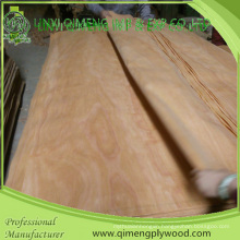 Size 1270-1300mmx2500-2520mm Abcd Grade Pencil Cedar Veneer for Plywood