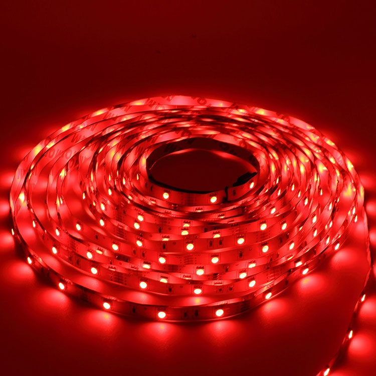 110v gs led rope light