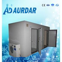 Высокое качество мини-хранения холодной комнаты на продажу