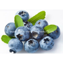 Europe Bilberry Extract