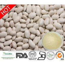 Fornecimento por atacado de alta qualidade branco feijão extrato em pó 4: 1 Phaseolin1%