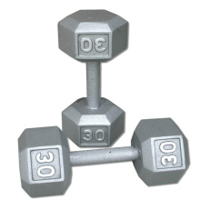 30LB ferro fundido Hex Dumbbell