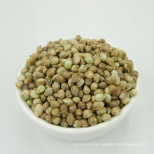 High Quality Bulk Hemp Seeds with Machine Selection for Birds feed