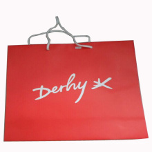 Handmade Paper Bag for Packing and Shopping (SW101)