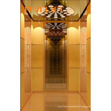 320kg, 400kg Indoor Home Elevator