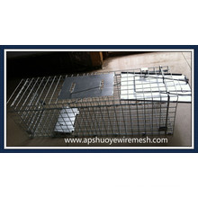 2016 Hot Sale Folding Collapsible Fox Trap Cages