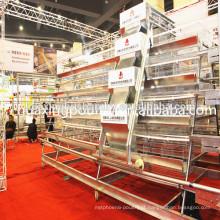 Gaiola de camada de frango à venda com gaiola de frango na China / gaiola de frango
