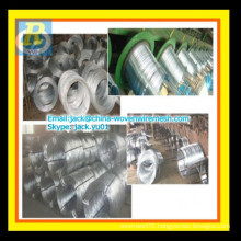 Electric Galvanized wire price/ Galvanized binding wire price