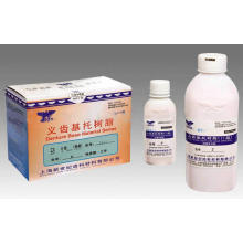 Materiales Base de la Dentadura Polvo Tipo II (Auto-curado)