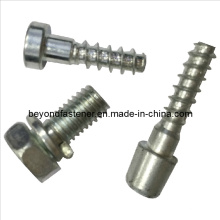 Screw Special Screw Non-Standard Screw Hex Socket Cap Screw Self Tapping Screw