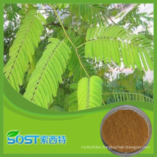 Wholesale Hot Selling acacia catechu extract powder