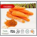 100% natürliches zertifiziertes organisches frisches getrocknetes Karotte-Extrakt-Beta-Carotin-Pulver