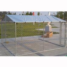 Outdoor Kennel for Dogs