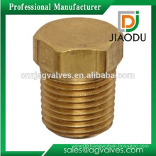 Brass Male Thread Cored Hex Head Plug