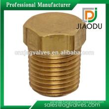 Brass Male Thread Cored Hex Head Plug