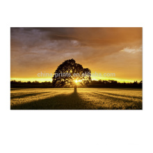 Natural Scenery Sunset Picture Art Wall Decor Canvas Art With Stretched Ready To Hang
