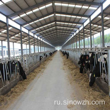 Prefab metal structure poultry house for animal