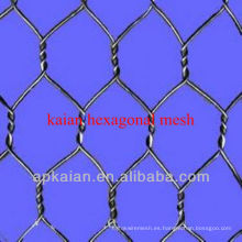 Hebei anping KAIAN malla hexagonal