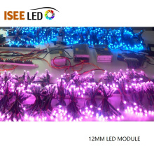 Módulo Led digital impermeable Pixel Ws281112mm