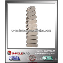 Customized Rare Earth Magnets