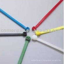 2.5 * 100mm attaches de câble en nylon autobloquantes